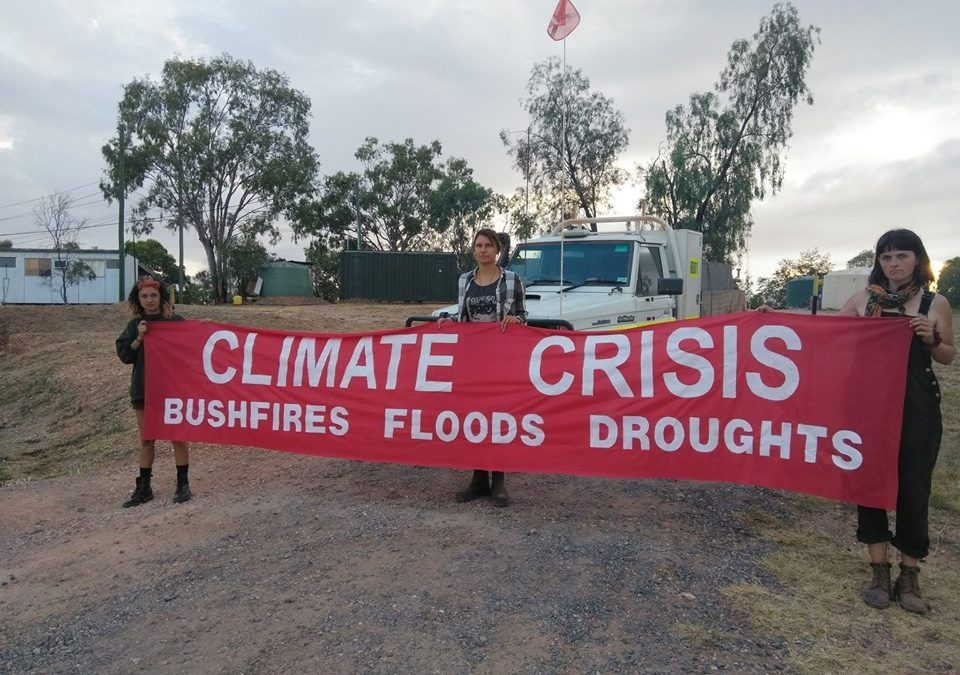 Work on Adani site disrupted as activists speak at parliamentary hearing